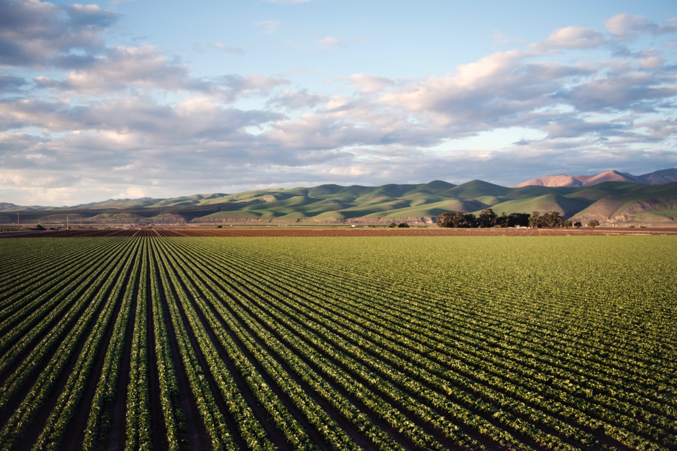 photo-of-green-field-near-mountains-974314